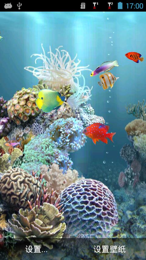 壁纸 动物 海底 海底世界 海洋馆 水族馆 鱼 鱼类 480_854 竖版 竖屏