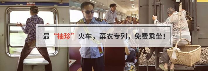 史上最暖心火车开动了!看菜农喜笑颜开(多图)